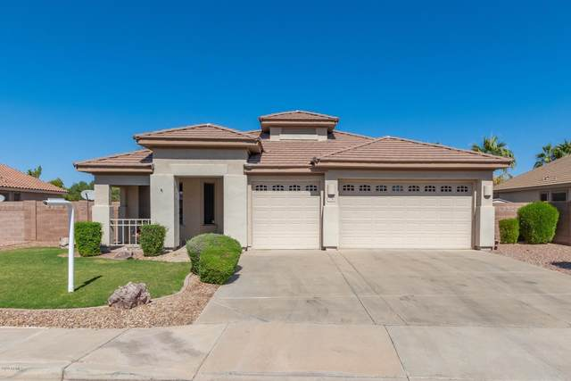 1790 E Lynx Place, Chandler, AZ 85249 (MLS #6145892) :: NextView Home Professionals, Brokered by eXp Realty