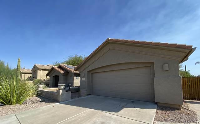 6407 S Mesa Vista Circle, Gold Canyon, AZ 85118 (MLS #6145902) :: Sheli Stoddart Team | M.A.Z. Realty Professionals