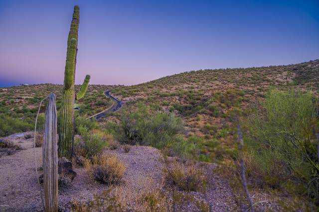 14 S Turtle Back Ranch Road, Wickenburg, AZ 85390 (#6145985) :: AZ Power Team | RE/MAX Results