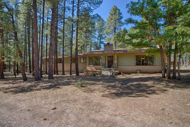 480 S Chipmunk Drive, Pinetop, AZ 85935 (MLS #6146021) :: Dijkstra & Co.