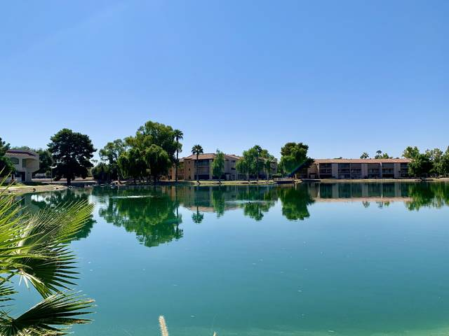 11666 N 28TH Drive #242, Phoenix, AZ 85029 (#6146022) :: Luxury Group - Realty Executives Arizona Properties