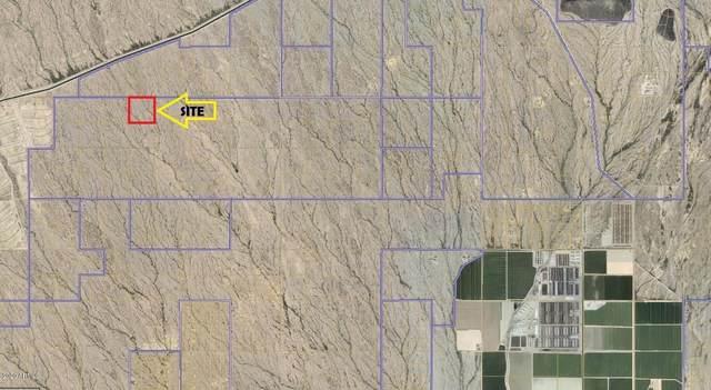43000 W Olive Avenue, Tonopah, AZ 85354 (MLS #6146056) :: The W Group