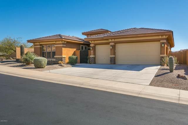 18169 W Narramore Road, Goodyear, AZ 85338 (MLS #6146098) :: Sheli Stoddart Team | M.A.Z. Realty Professionals