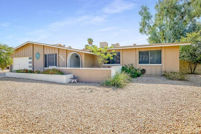 4909 W Torrey Pines Circle, Glendale, AZ 85308 (MLS #6146249) :: Dijkstra & Co.