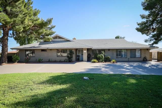 8207 W Cactus Road, Peoria, AZ 85381 (MLS #6146258) :: Klaus Team Real Estate Solutions