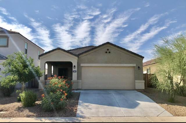 3442 N 300TH Drive, Buckeye, AZ 85396 (MLS #6146261) :: Dijkstra & Co.