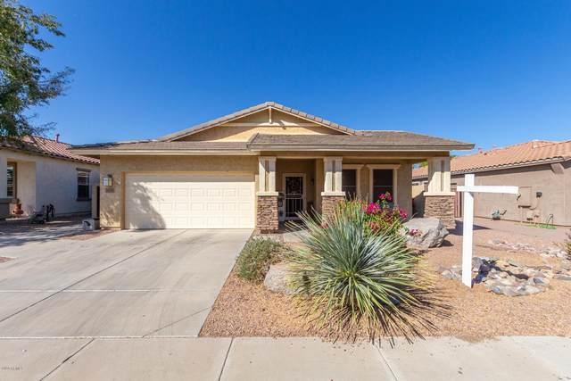 7018 S View Lane, Gilbert, AZ 85298 (MLS #6146367) :: My Home Group