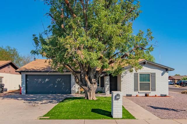 6723 N 31ST Lane, Phoenix, AZ 85017 (MLS #6146389) :: TIBBS Realty