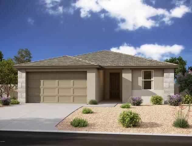 5518 W Stargazer Place, Laveen, AZ 85339 (MLS #6146499) :: Brett Tanner Home Selling Team