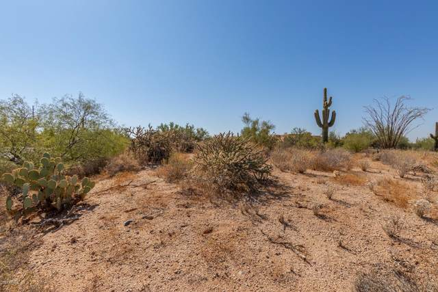 000 N Cave Creek Road, Carefree, AZ 85377 (MLS #6146551) :: The Dobbins Team