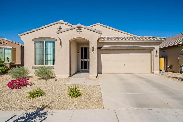 17240 W Williams Street, Goodyear, AZ 85338 (MLS #6146591) :: Sheli Stoddart Team | M.A.Z. Realty Professionals