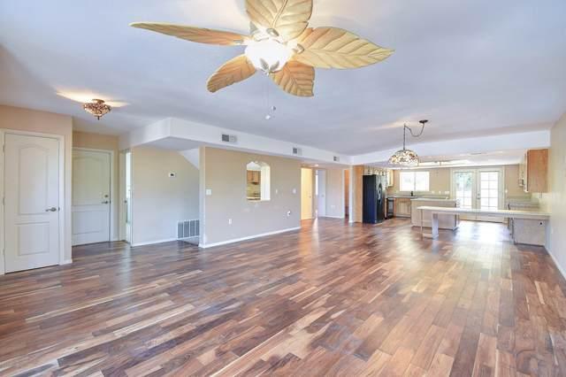 6257 E Orion Street, Mesa, AZ 85215 (MLS #6146761) :: The Daniel Montez Real Estate Group