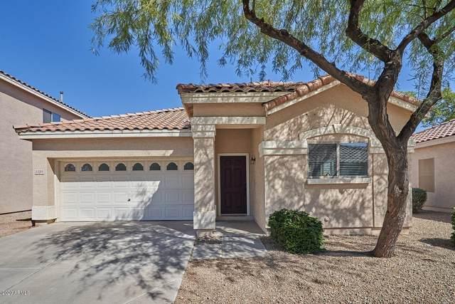 1325 S Mosley Court, Chandler, AZ 85286 (MLS #6146769) :: Arizona Home Group
