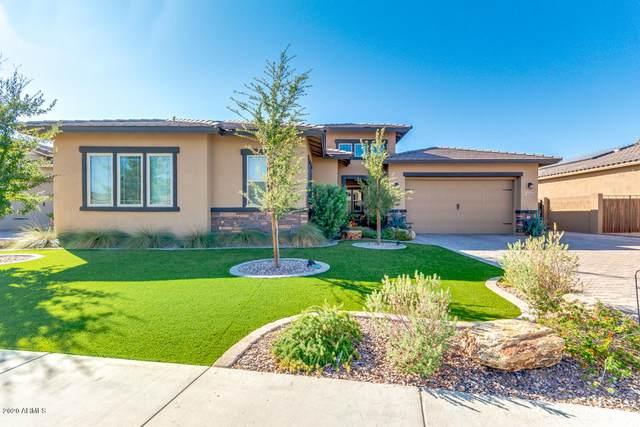 9339 W Plum Road, Peoria, AZ 85383 (MLS #6146781) :: Brett Tanner Home Selling Team