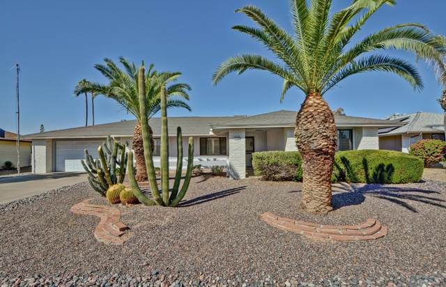 12428 W Firebird Drive, Sun City West, AZ 85375 (MLS #6146822) :: John Hogen | Realty ONE Group