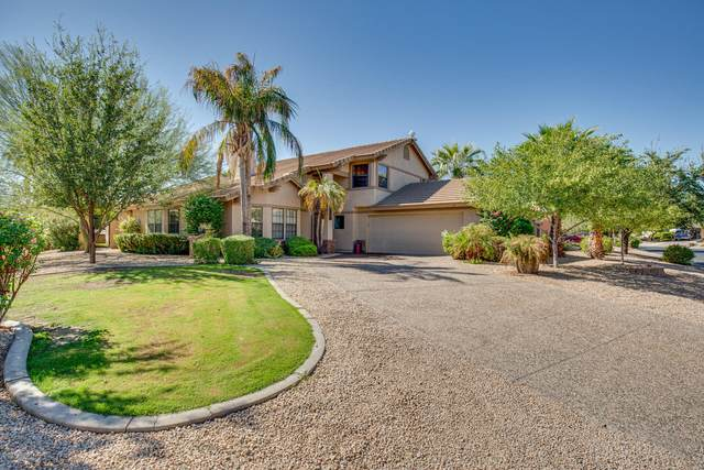 14115 W Greenview Circle N, Litchfield Park, AZ 85340 (MLS #6146844) :: Scott Gaertner Group