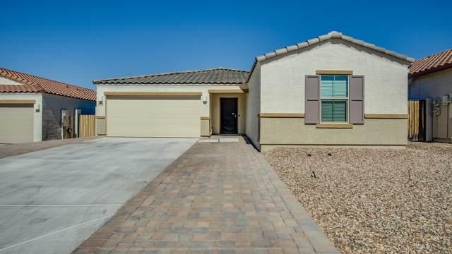 18406 E Verde Court, Gold Canyon, AZ 85118 (MLS #6146867) :: Scott Gaertner Group