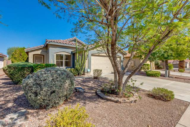 13838 W Fargo Drive, Surprise, AZ 85374 (MLS #6146974) :: The Laughton Team