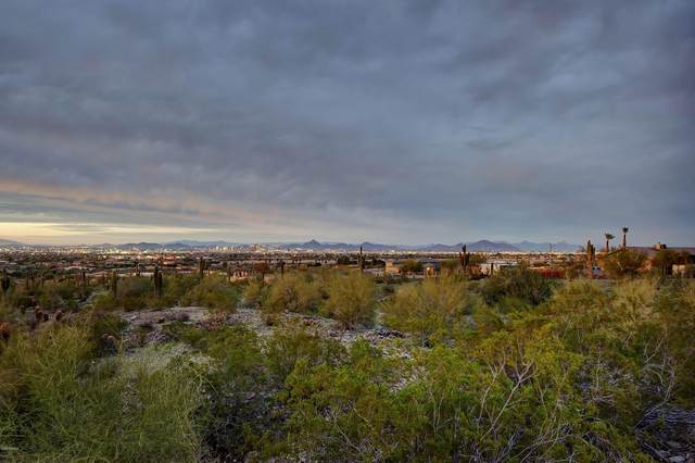 10245 S 20TH Avenue, Phoenix, AZ 85041 (MLS #6147002) :: neXGen Real Estate