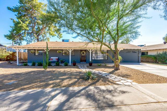 8631 E Rancho Vista Drive, Scottsdale, AZ 85251 (MLS #6147006) :: Midland Real Estate Alliance