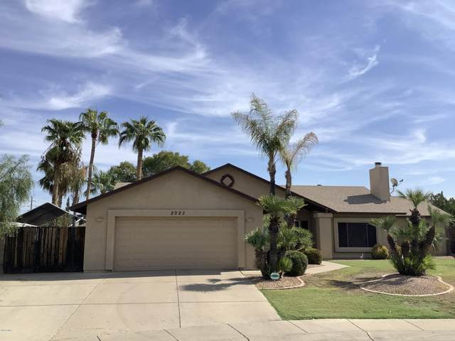 2023 W Gila Lane, Chandler, AZ 85224 (MLS #6147069) :: Openshaw Real Estate Group in partnership with The Jesse Herfel Real Estate Group