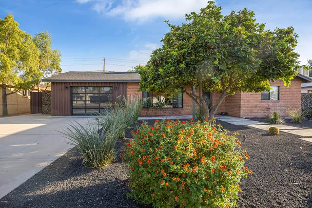 1837 E Minnezona Avenue, Phoenix, AZ 85016 (MLS #6147138) :: Dijkstra & Co.
