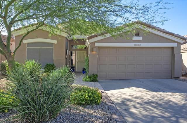 8939 E Conquistadores Drive, Scottsdale, AZ 85255 (MLS #6147147) :: The Carin Nguyen Team