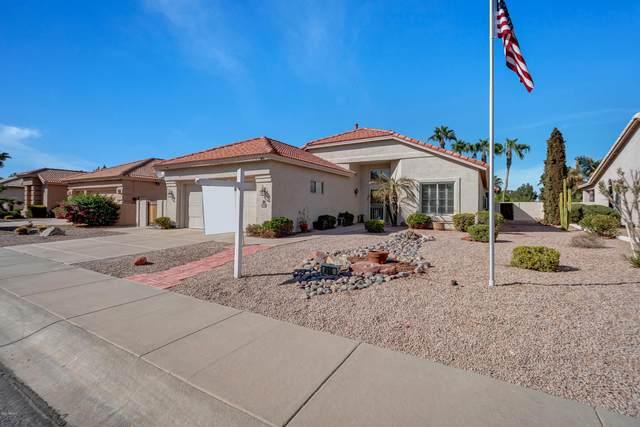 490 W Cherrywood Drive, Sun Lakes, AZ 85248 (MLS #6147166) :: Sheli Stoddart Team | M.A.Z. Realty Professionals
