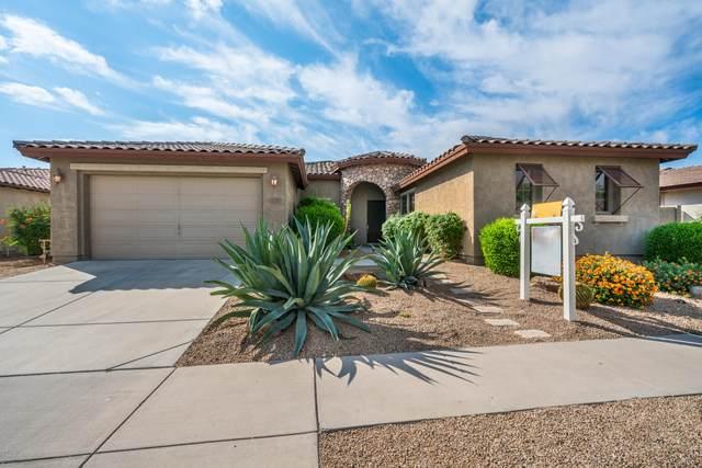 1735 W Aloe Vera Drive, Phoenix, AZ 85085 (MLS #6147195) :: D & R Realty LLC