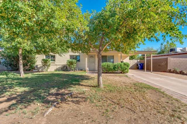 1665 N Trevor, Mesa, AZ 85201 (MLS #6147291) :: The Ellens Team