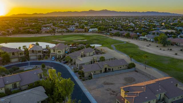 14278 W Wilshire Drive, Goodyear, AZ 85395 (MLS #6147366) :: John Hogen | Realty ONE Group