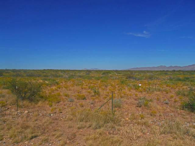 TBD W Portal Road, Portal, AZ 85632 (MLS #6147380) :: neXGen Real Estate