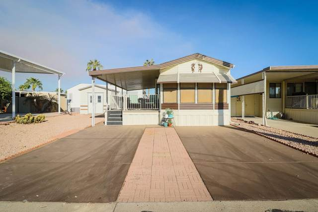 17200 W Bell Road #430, Surprise, AZ 85374 (MLS #6147395) :: The Everest Team at eXp Realty