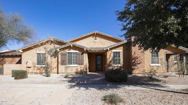 13421 N 151ST Drive, Surprise, AZ 85379 (MLS #6147410) :: Sheli Stoddart Team | M.A.Z. Realty Professionals