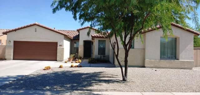 8817 S 53RD Drive, Laveen, AZ 85339 (MLS #6147485) :: Nate Martinez Team