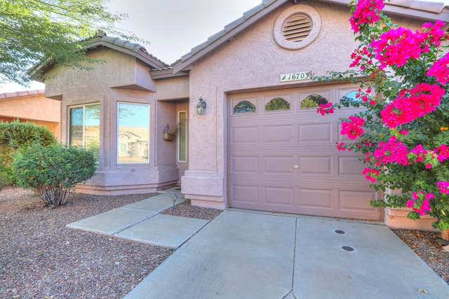 16703 S 22ND Street, Phoenix, AZ 85048 (#6147519) :: Luxury Group - Realty Executives Arizona Properties