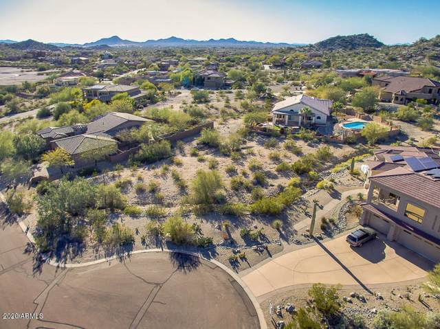 10746 S Blossom Drive, Goodyear, AZ 85338 (MLS #6147635) :: The Riddle Group