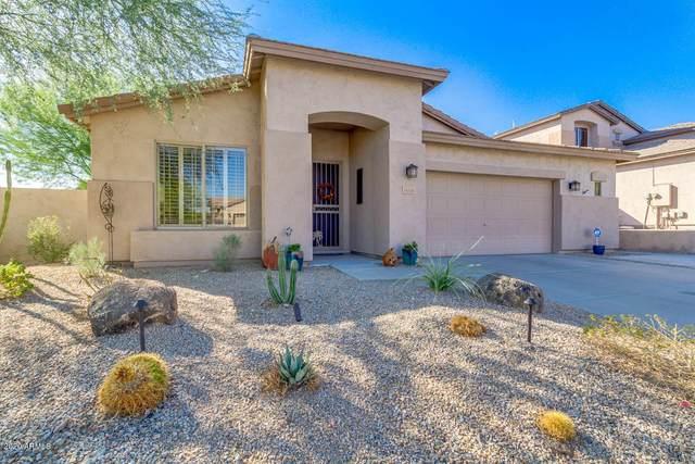 16608 S 16TH Drive, Phoenix, AZ 85045 (MLS #6147671) :: John Hogen | Realty ONE Group