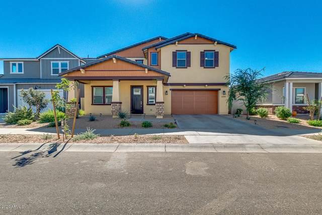 22757 E Calle Luna, Queen Creek, AZ 85142 (MLS #6147679) :: Sheli Stoddart Team   M.A.Z. Realty Professionals