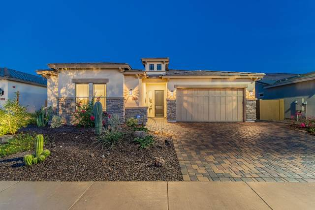 31305 N 122ND Avenue, Peoria, AZ 85383 (MLS #6147688) :: The Laughton Team
