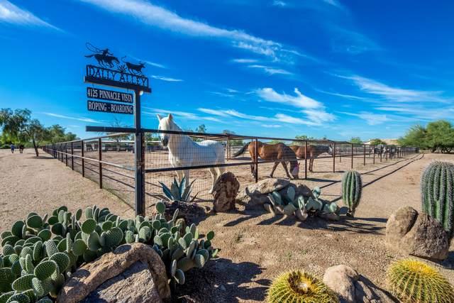 4125 E Pinnacle Vista Drive, Cave Creek, AZ 85331 (MLS #6147697) :: Sheli Stoddart Team | M.A.Z. Realty Professionals