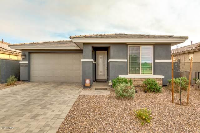 14433 W Via Del Oro, Surprise, AZ 85379 (MLS #6147717) :: Long Realty West Valley