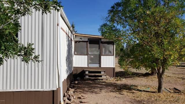 164 N Party Lane, Young, AZ 85554 (MLS #6147738) :: Maison DeBlanc Real Estate