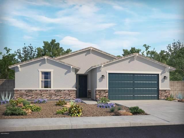 18439 W Alice Avenue, Waddell, AZ 85355 (MLS #6147795) :: Brett Tanner Home Selling Team
