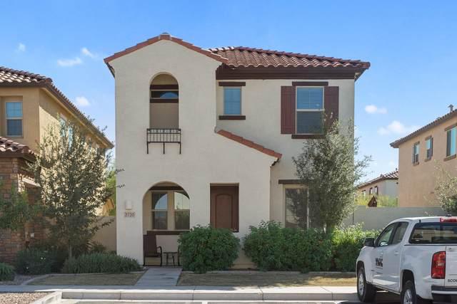 3730 E Trinity Lane, Chandler, AZ 85286 (MLS #6147798) :: Nate Martinez Team