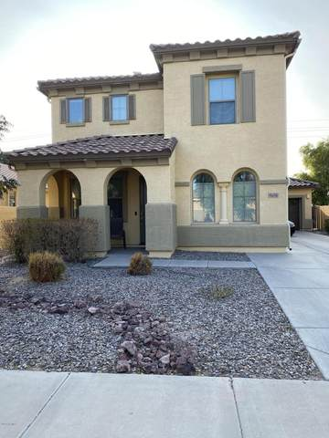 4656 S Twinleaf Drive, Gilbert, AZ 85297 (MLS #6147876) :: The Everest Team at eXp Realty