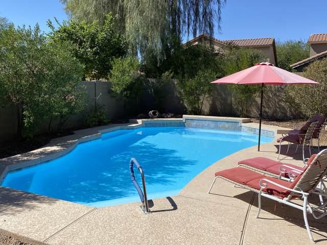 39916 N River Bend Road, Phoenix, AZ 85086 (MLS #6147918) :: The Riddle Group