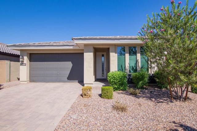 14372 W Aster Drive, Surprise, AZ 85379 (MLS #6148026) :: The Carin Nguyen Team