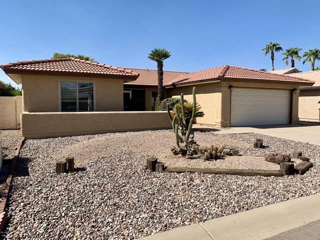 26430 S Sedona Drive, Sun Lakes, AZ 85248 (MLS #6148130) :: Sheli Stoddart Team | M.A.Z. Realty Professionals