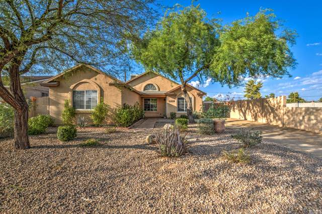 2848 E Campo Bello Drive, Phoenix, AZ 85032 (MLS #6148165) :: NextView Home Professionals, Brokered by eXp Realty